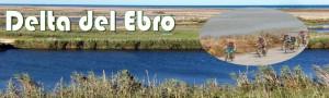 Delta del Ebro - ArcoTur