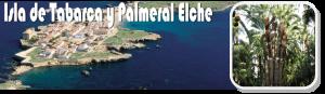 Isla de Tabarca y Palmeral de Elche - ArcoTur