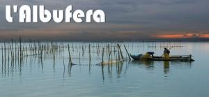 La Albufera de Valencia - ArcoTur